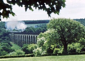 Evening Star crosses_Crimple_Viaduct_-_geograph.org.uk_-_845575